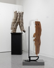 Background: <i>Fenced Bark Torso</i> (2015), Jim Woolems. Foreground: <i>Dualism</i> (2016), Jim Woolems.
