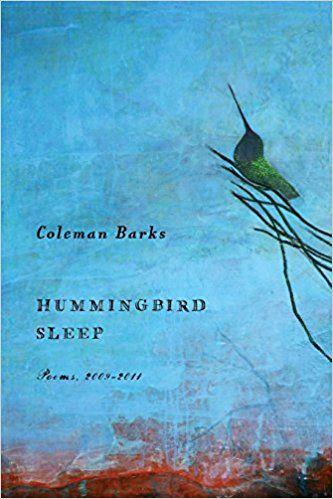 Hummingbird Sleep