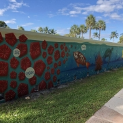 Red Reef Park Wall Mural  - Craig McInnis