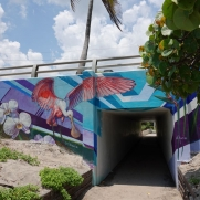 Spanish River Park Central Tunnel
