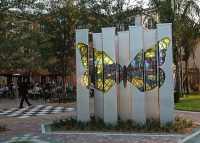 """Butterfly Column Grove"" by Mark Fuller"