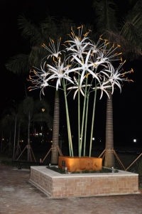 """Giant Spider Lily"" by Robert St. Croix"