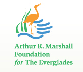 Arthur R Marshall Foundation for the Everglades
