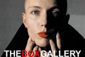 Box Gallery - High Gloss