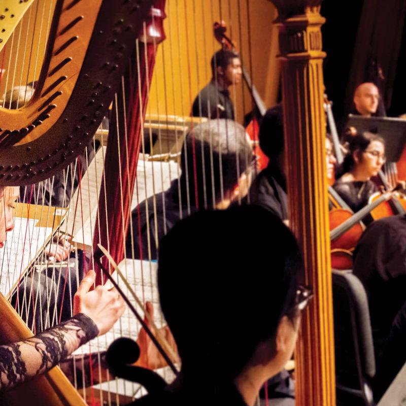 Lynn University's Philharmonia No. 3 showcases Concerto Competition Winners