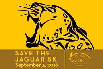 Palm Beach Zoo - Save the Jaguar 5K 2016