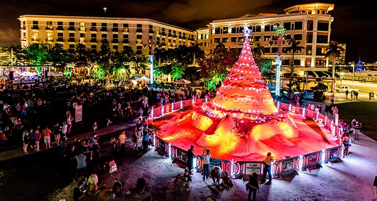 Sandi Tree, City of West Palm Beach