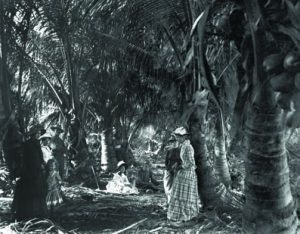 Palm Grove, photographer unknown, circa 1880s (Historical Society of Palm Beach County)