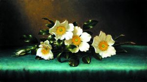 Four Cherokee Roses, Martin Johnson Heade